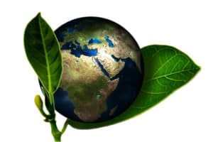 going green with sustainable product by Scout Sourcing